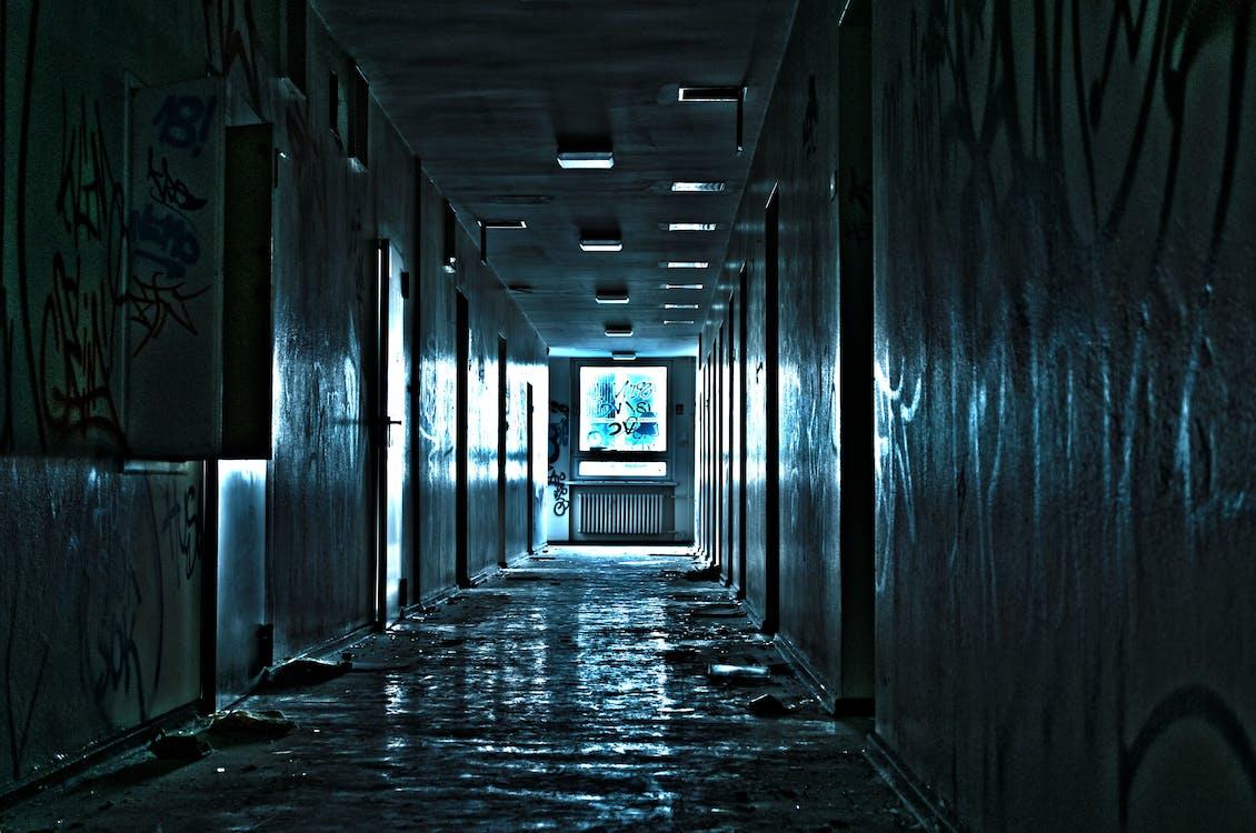 abandonado, assustador, entrada