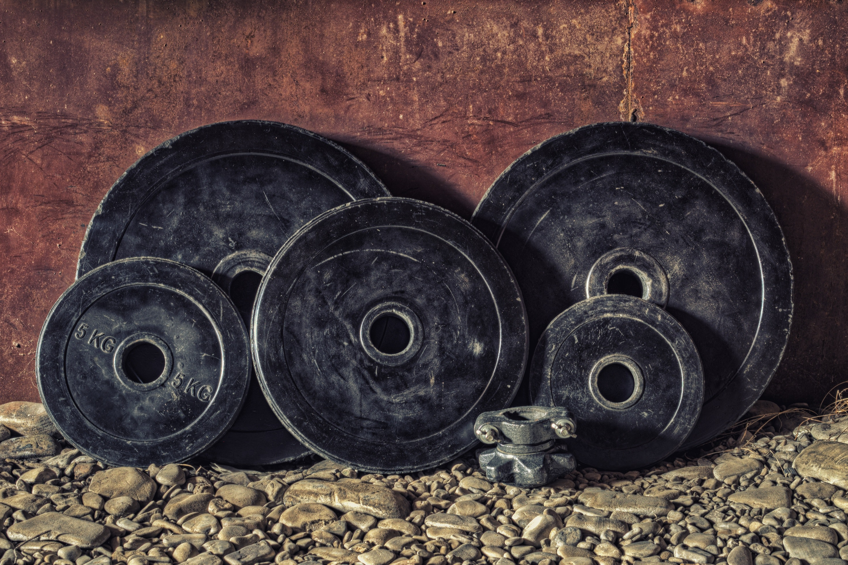 Free Stock Photo Of Adult, Barbell, Body-4639