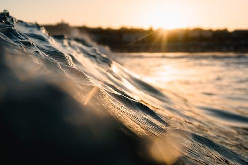 Fotos de stock gratuitas de agua, amanecer, decir adiós con la mano, mar