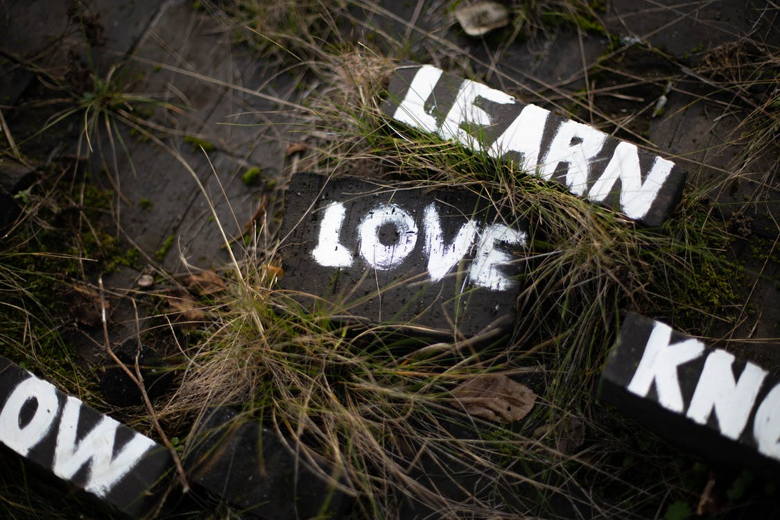 Learn and Love Paint on Soil Surrounded Grass
