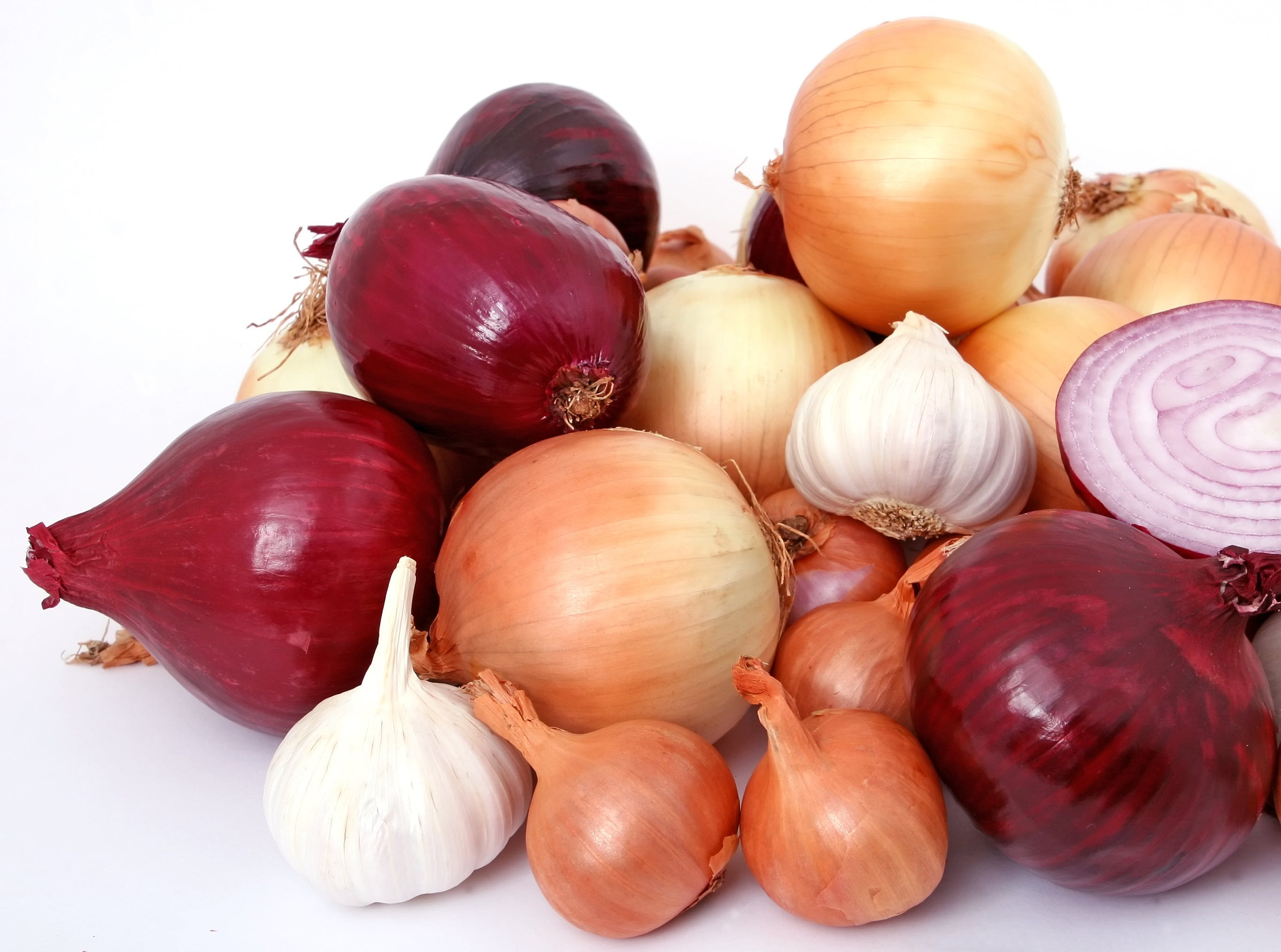 de ajo, blanco, bombilla, cebolla