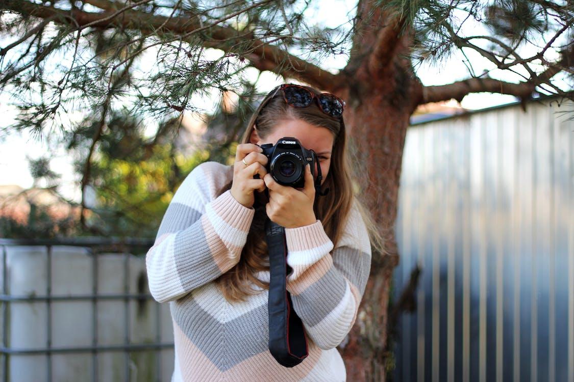 ağaç, fotoğraf çekmek, Kadın