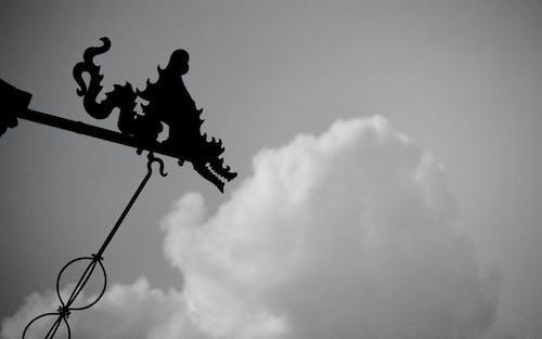 คลังภาพถ่ายฟรี ของ ขาวดำ, ตุ๊กตา, มังกร, เมฆ