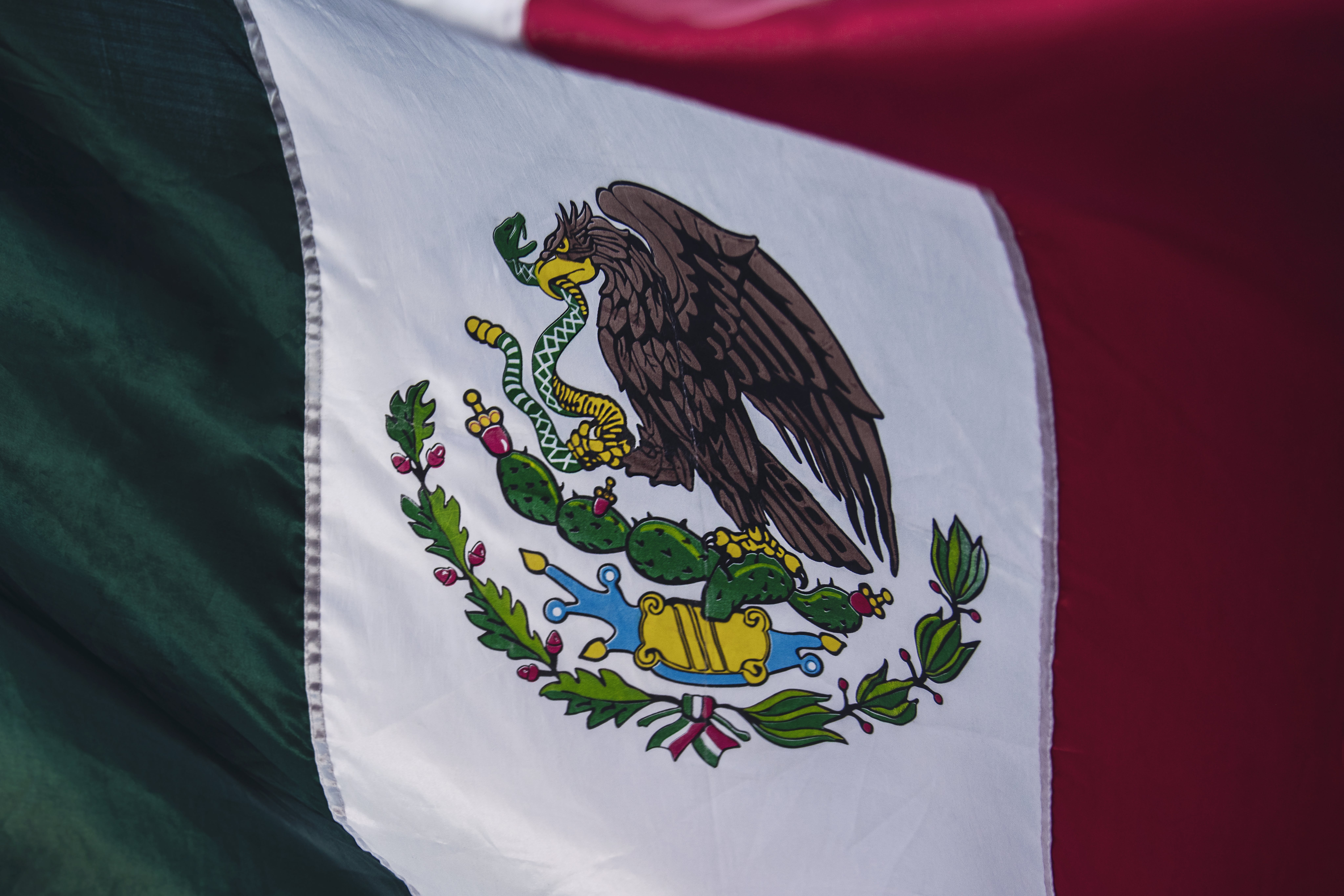 Close-up of Red, White, and Green Country Flag