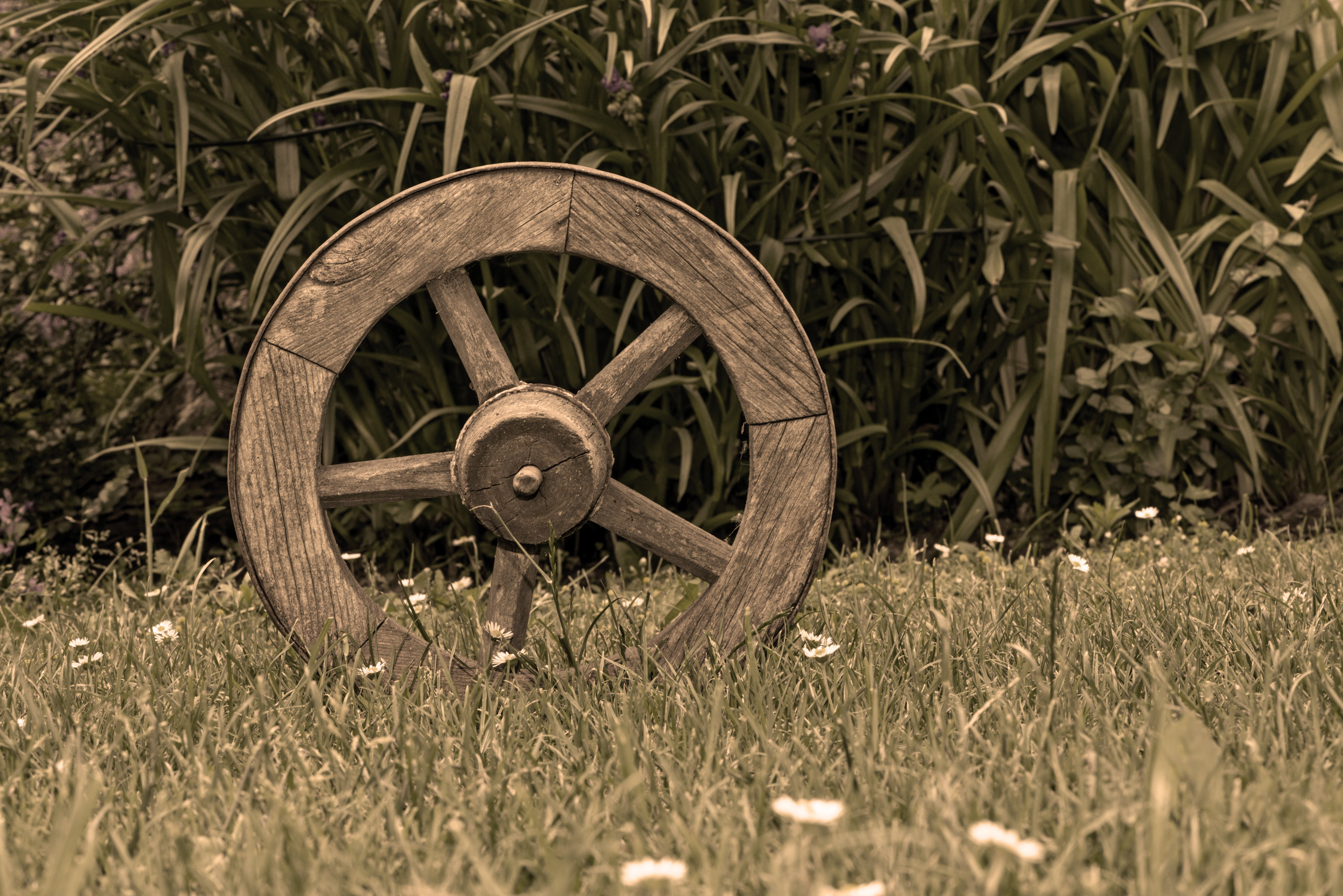 Brown Wooden Wheel on Top of Green Grass