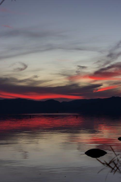 물, 반사, 새벽