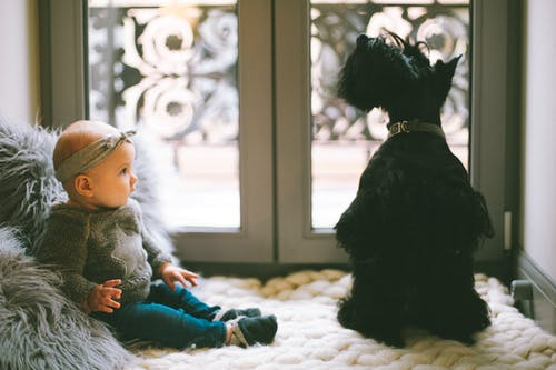 Baby Beside Scottish Terrier