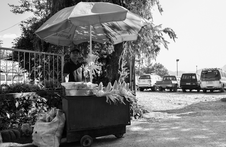 Free stock photo of black, black and white, black and-white, bnw