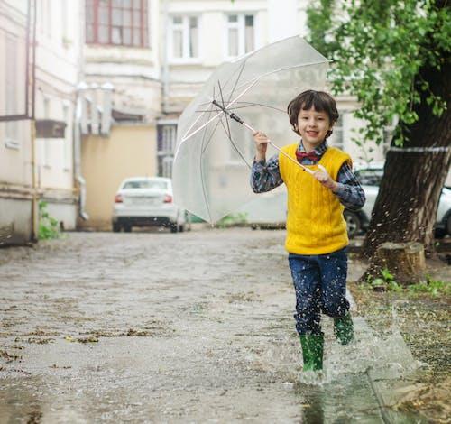 Základová fotografie zdarma na téma cákání, chlapec, denní světlo, deštník