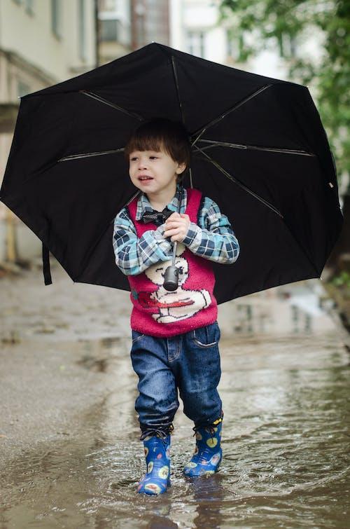 Gratis stockfoto met jongen, kid, kind, lief