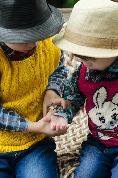 Gratis lagerfoto af børn, familie, folk, hænder