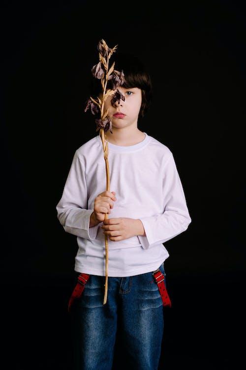 Ingyenes stockfotó ázsiai fiú, divat, fekete háttér, fesztelen témában