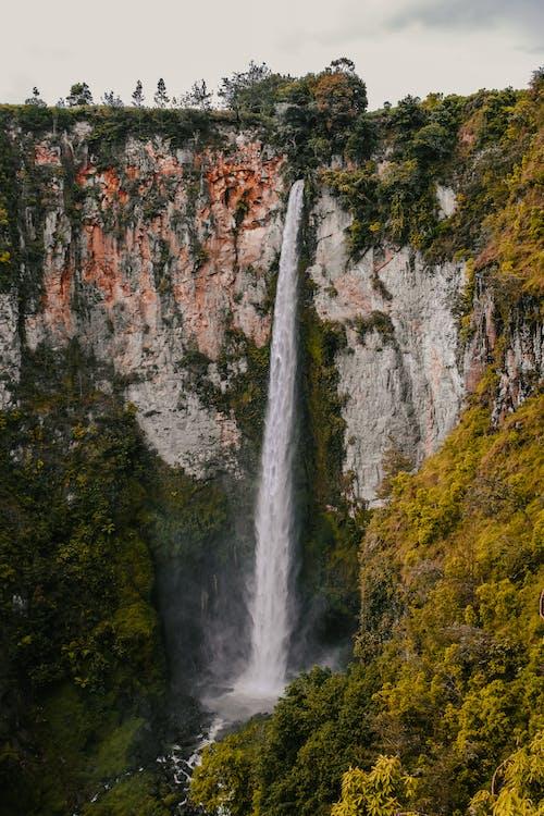 Δωρεάν στοκ φωτογραφιών με time lapse, βουνό, γραφικός, δέντρα