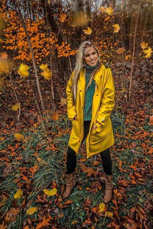 Kostenloses Stock Foto zu bäume, blätter, fashion, frau