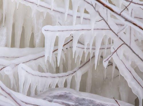 Fotos de stock gratuitas de blanco, carámbano, carámbanos, congelar