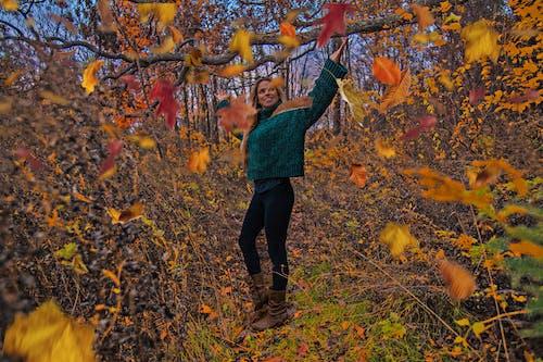 Free stock photo of autumn mood, fall colors, fall fashion, fall foliage