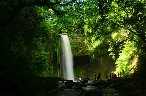 Immagine gratuita di buruwisan falls, laguna