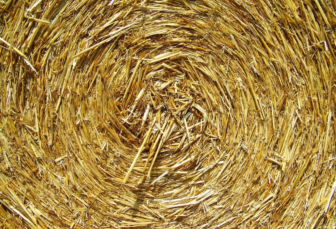 Brown Rolled Hay