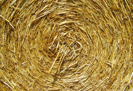 Brown Rolled Hay