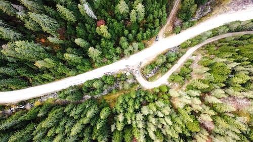 保加利亞, 無人機, 無人機攝影, 無人機視圖 的 免費圖庫相片