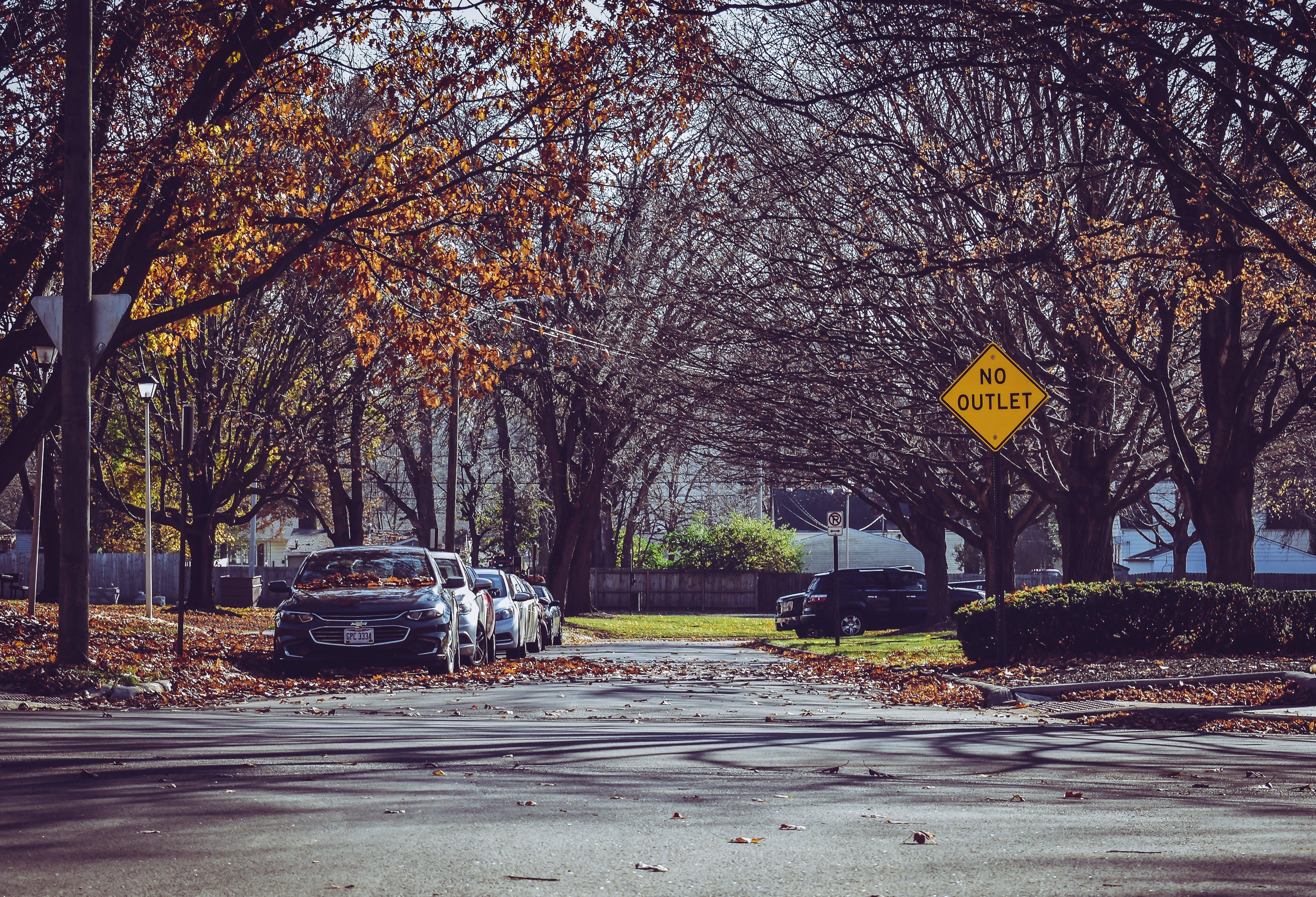 ağaçlar, arabalar, mevsim, park etmiş içeren Ücretsiz stok fotoğraf