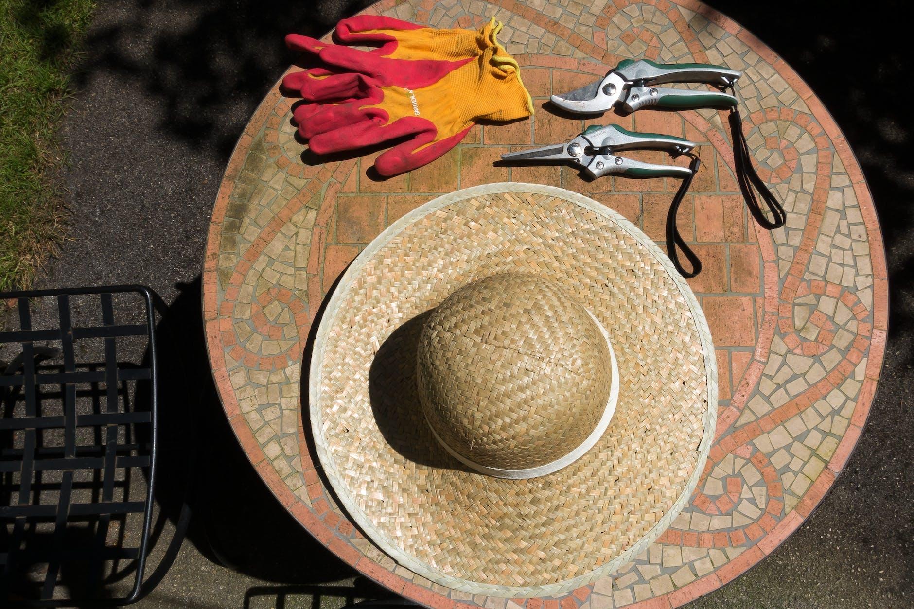 Garden Season Tips | Best Garden Gloves for Green Thumbs