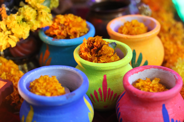 Free stock photo of blue, colorful, colourful matkis, Diwali