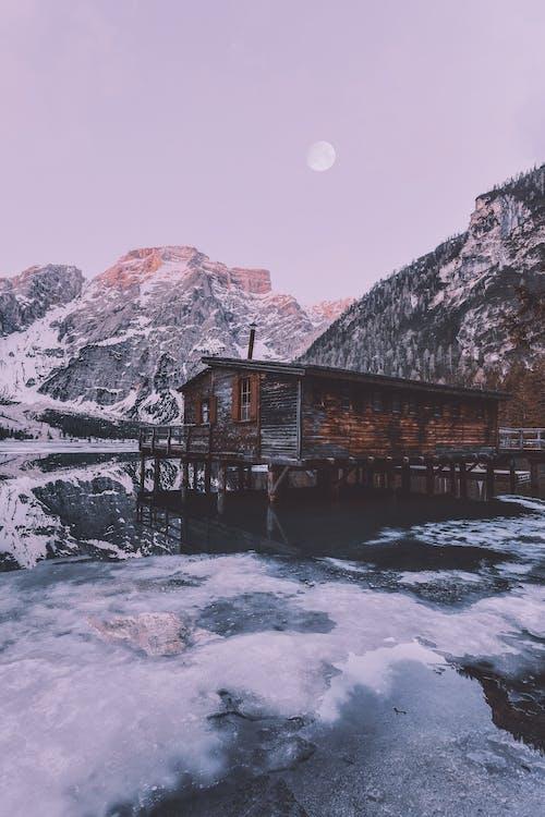 Foto d'estoc gratuïta de alba, arbres, aventura, boscos