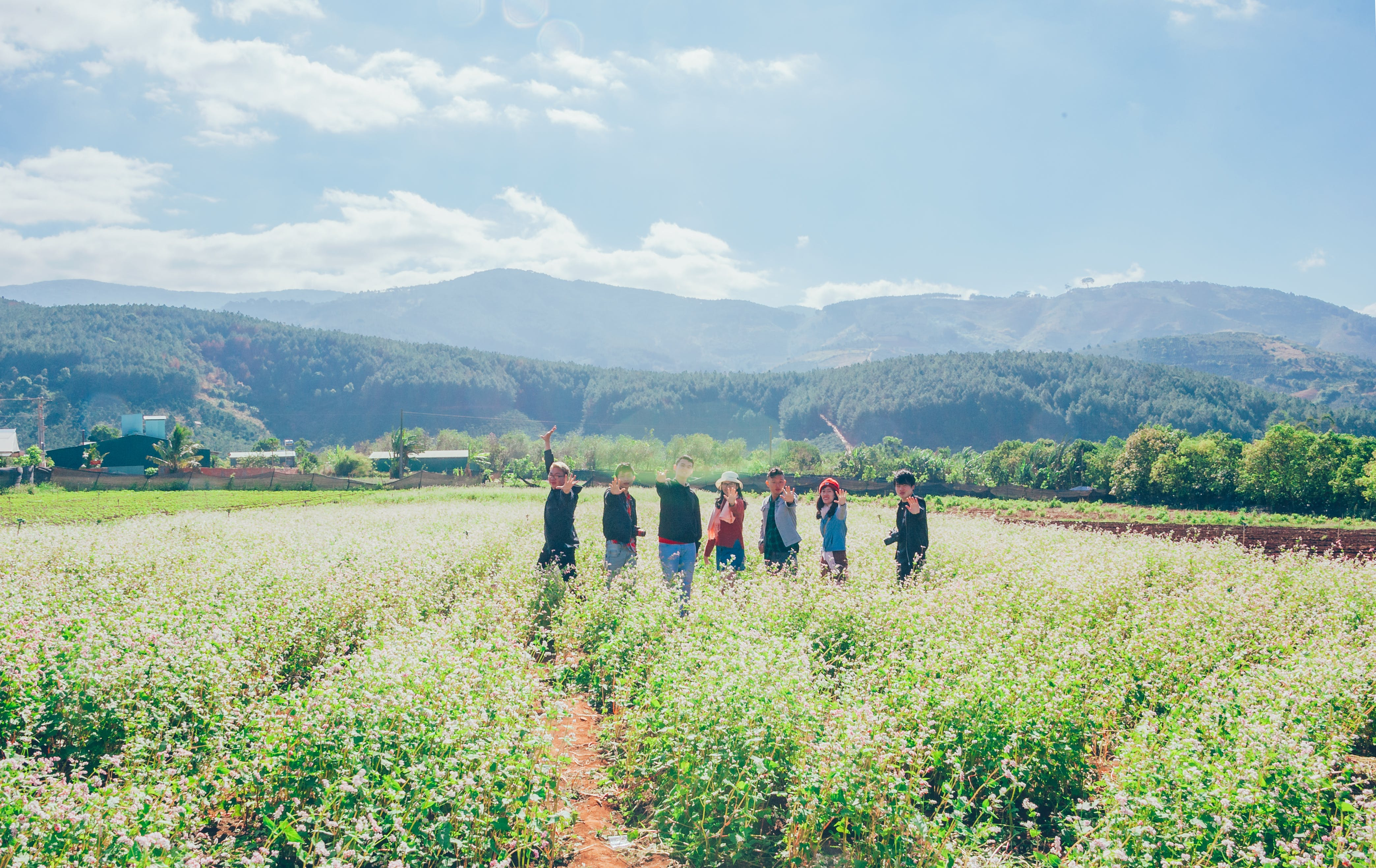 Group Of People Standing On Field Of Plants