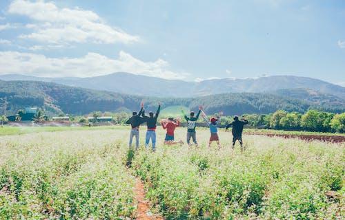 Безкоштовне стокове фото на тему «вродлива, вродливий, гора, групувати»