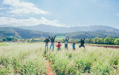 Fotobanka sbezplatnými fotkami na tému denné svetlo, farma, flóra, hora