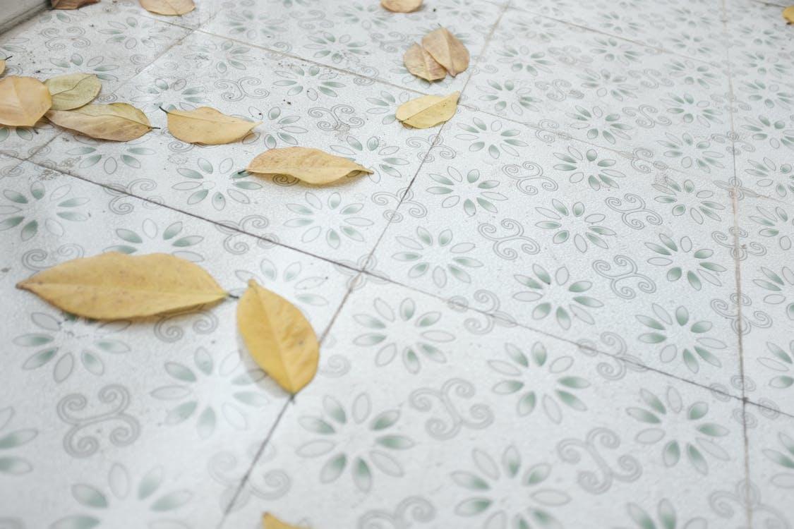 colori, foglie, pavimento