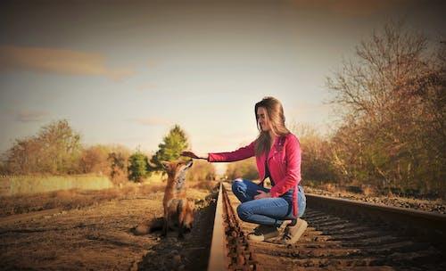 Free stock photo of dievča, europa, foxgirl, líška