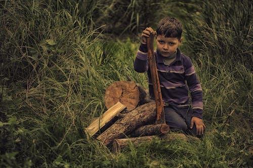Gratis lagerfoto af barn, Dreng, græs, lange ærmer