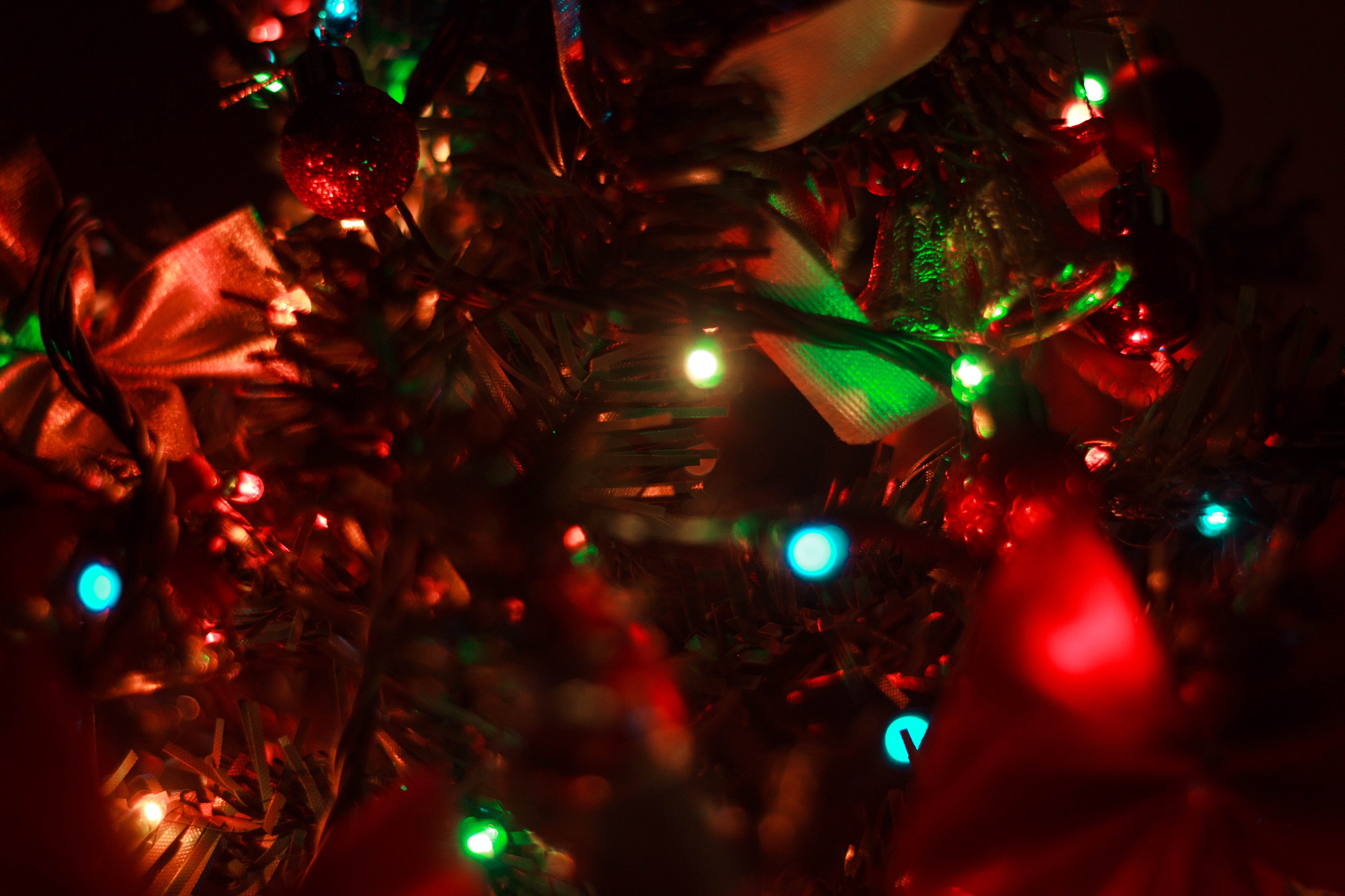 Close Up Photo of Christmas Tree With String Lights