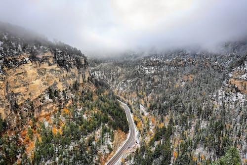 nationalforest, 冬季, 天性, 天空 的 免費圖庫相片