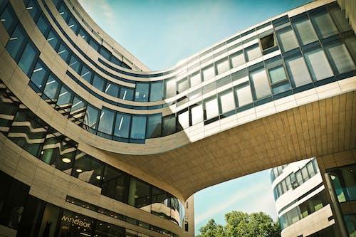 Immagine gratuita di albero, architettura, bicchiere, edificio