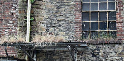 Foto stok gratis bata, cemar, dinding bata, membangun
