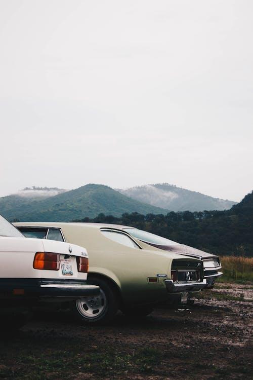 Foto stok gratis alam, dasar, keindahan di alam, mobil klasik