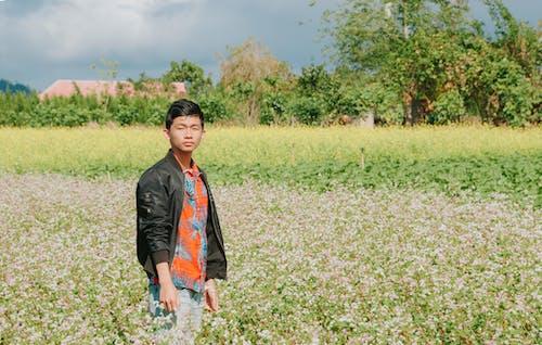 Kostenloses Stock Foto zu asiatischer mann, außerorts, ernte, feld