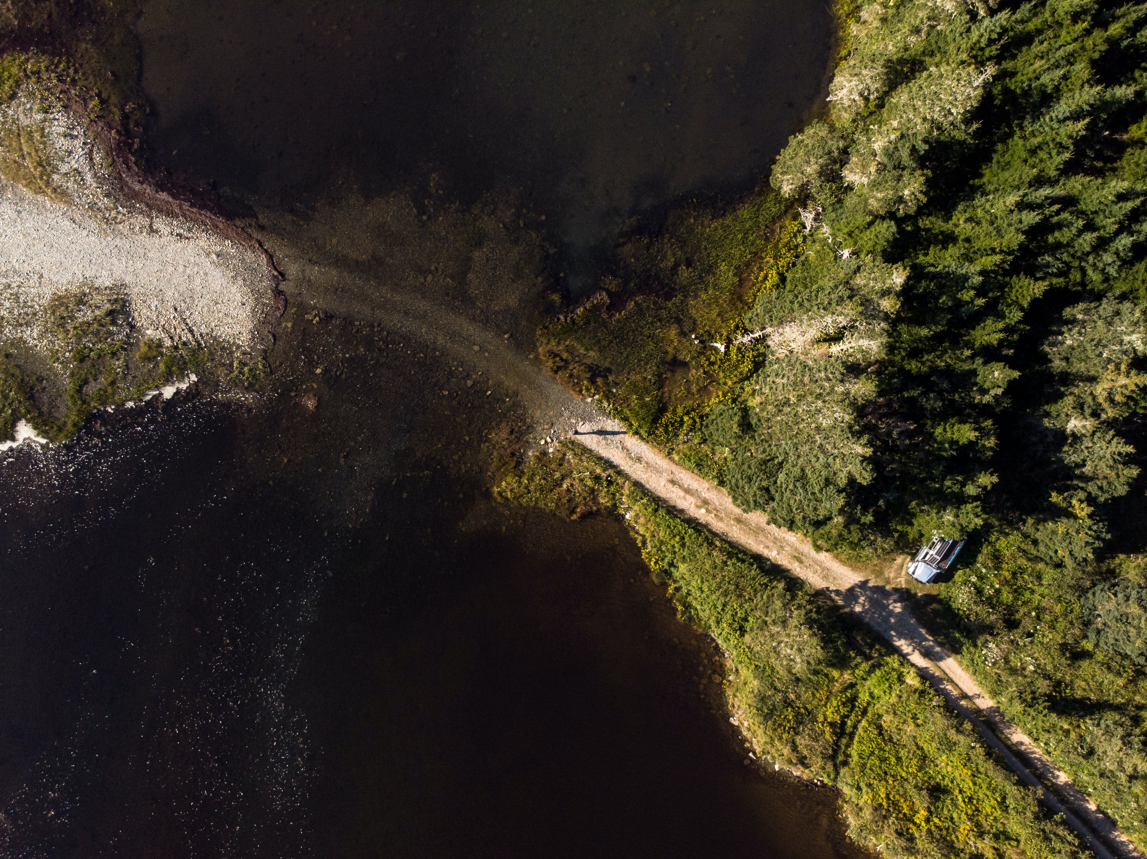 Aerial Photography Of Road Near Trees