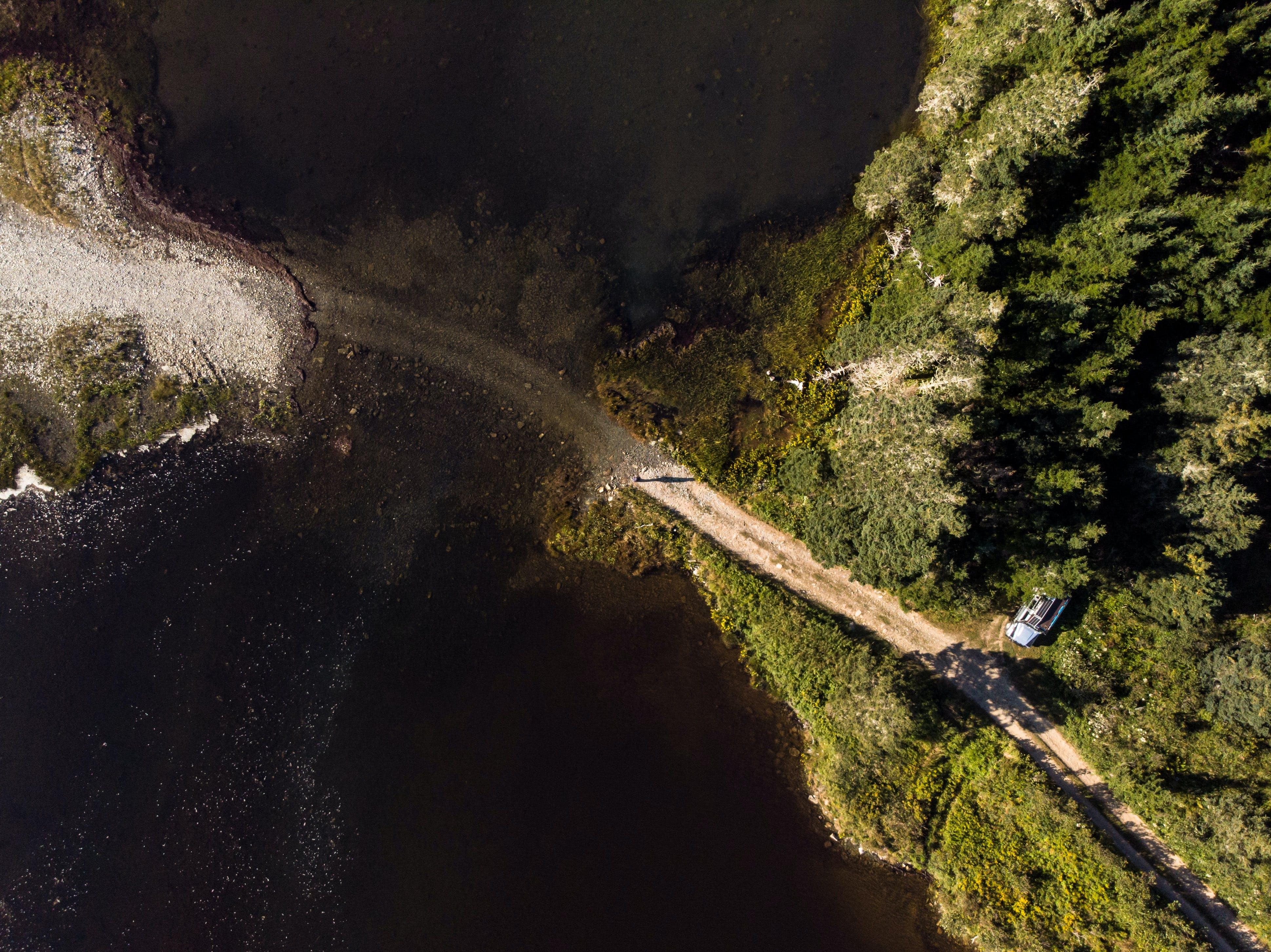Kostenloses Stock Foto zu bäume, cape breton, kanada, luftschuß