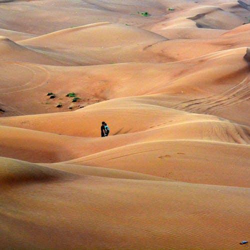 Foto d'estoc gratuïta de desert, dubai, EAU, safari