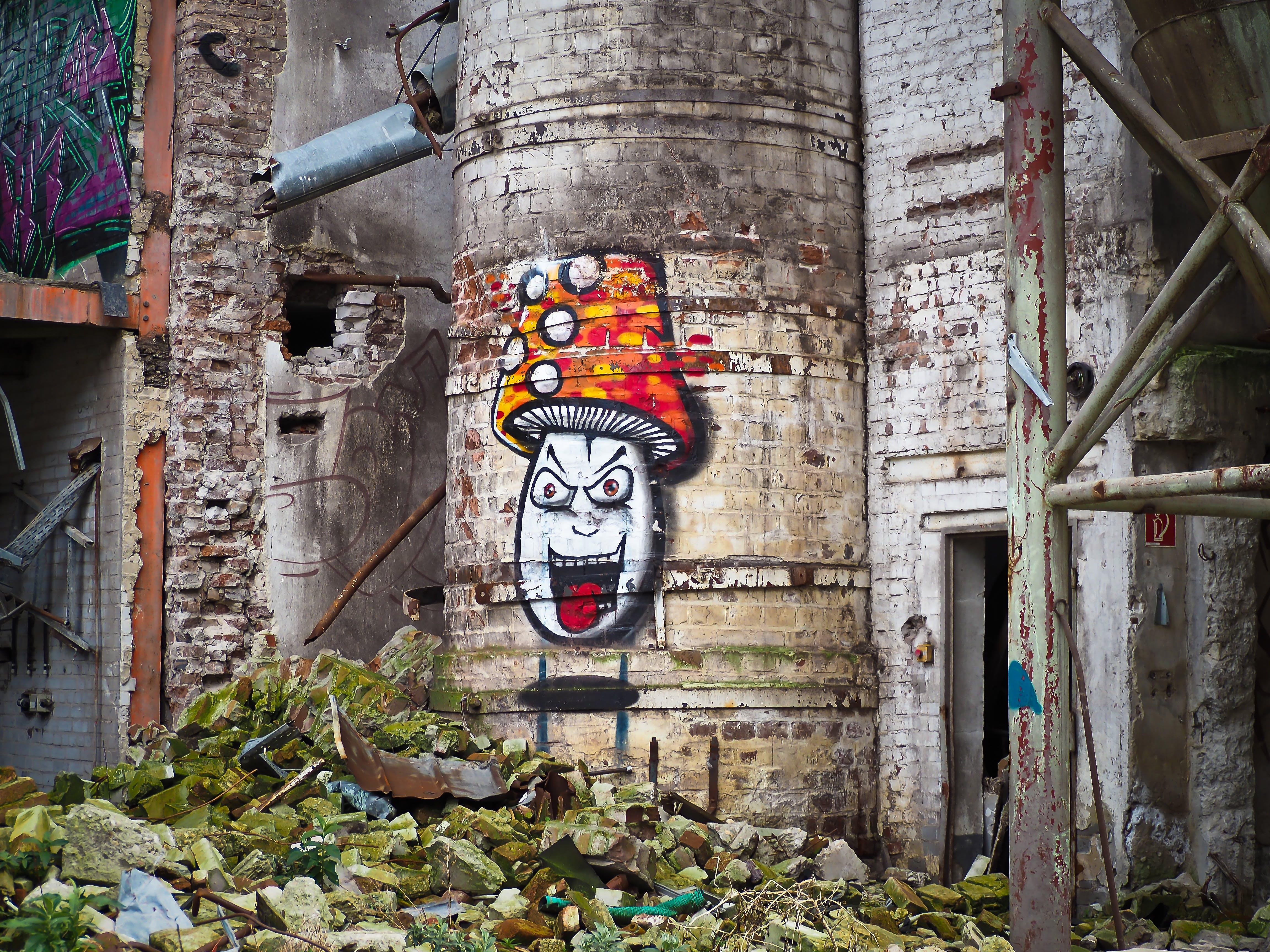 Mushroom Graffiti on Concrete Building during Daytime