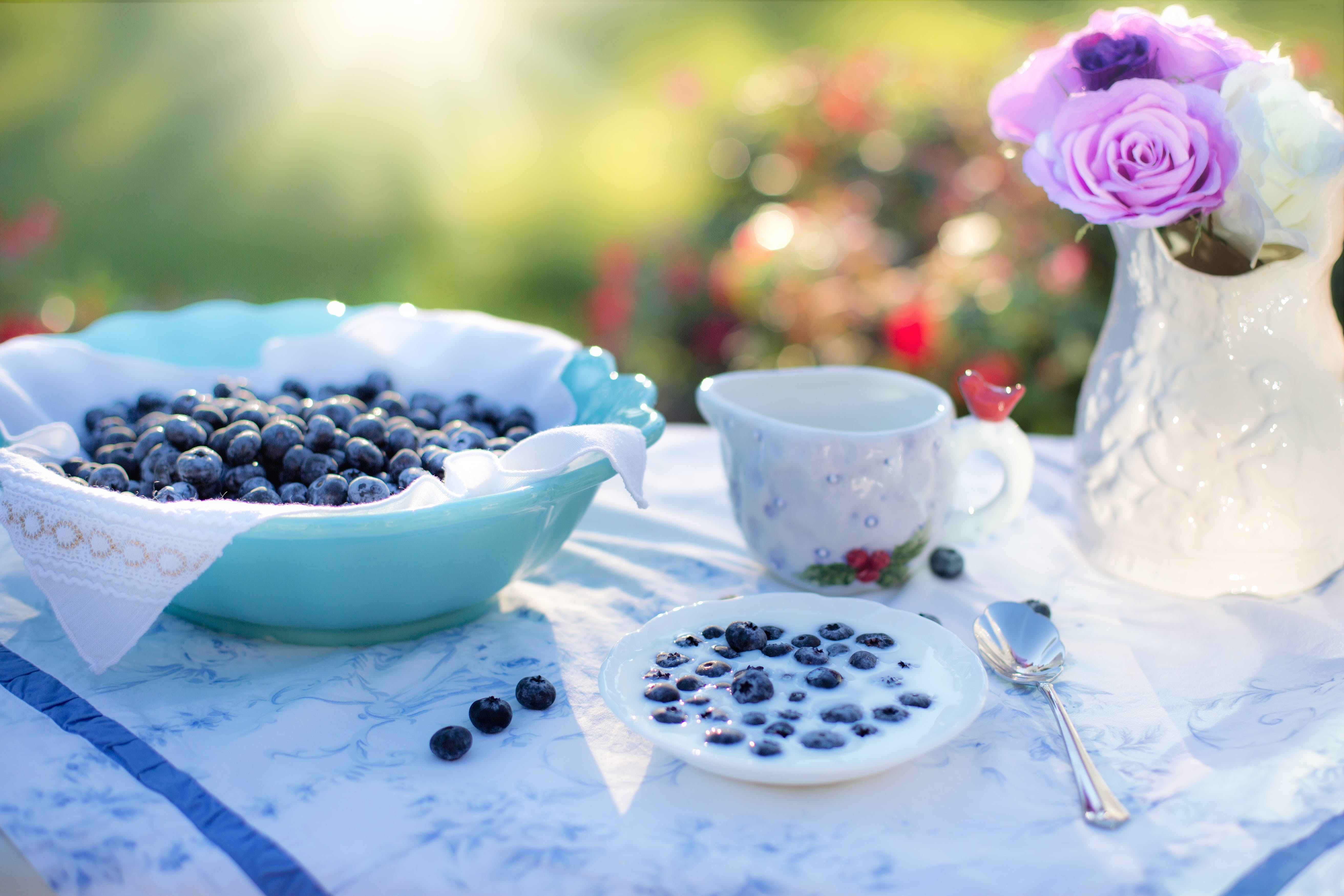 Bowl of Blue Berries on a Table in a Garden on a Sunny Day