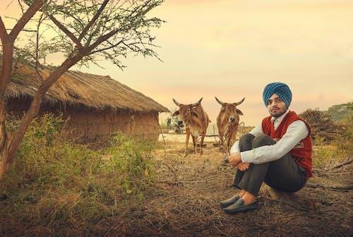 คลังภาพถ่ายฟรี ของ natue, คนอินเดีย, ความงามในธรรมชาติ, ชายชาวอินเดีย