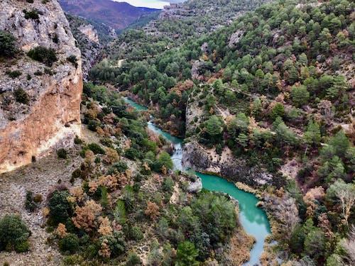 Бесплатное стоковое фото с вид, вода, горы, деревья