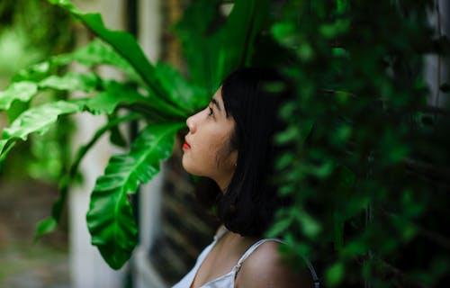 Kostenloses Stock Foto zu asiatische frau, blätter, frau, model