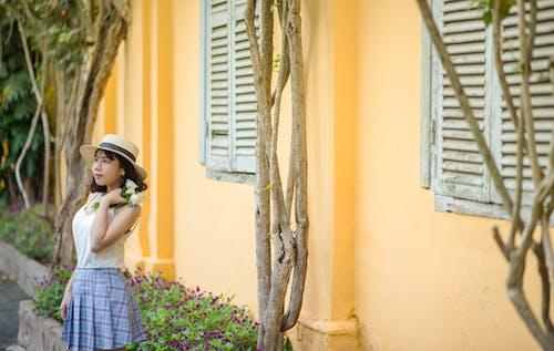 Kostenloses Stock Foto zu asiatische frau, frau, hübsch, person