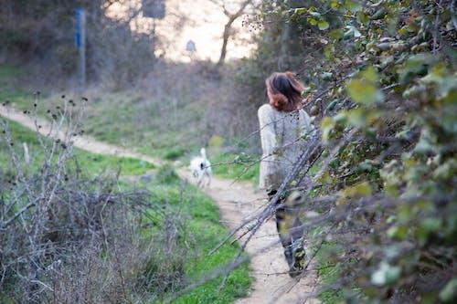 개, 녹색, 소녀, 자연의 무료 스톡 사진